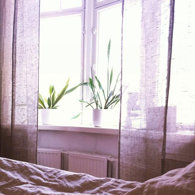 uusi aamu