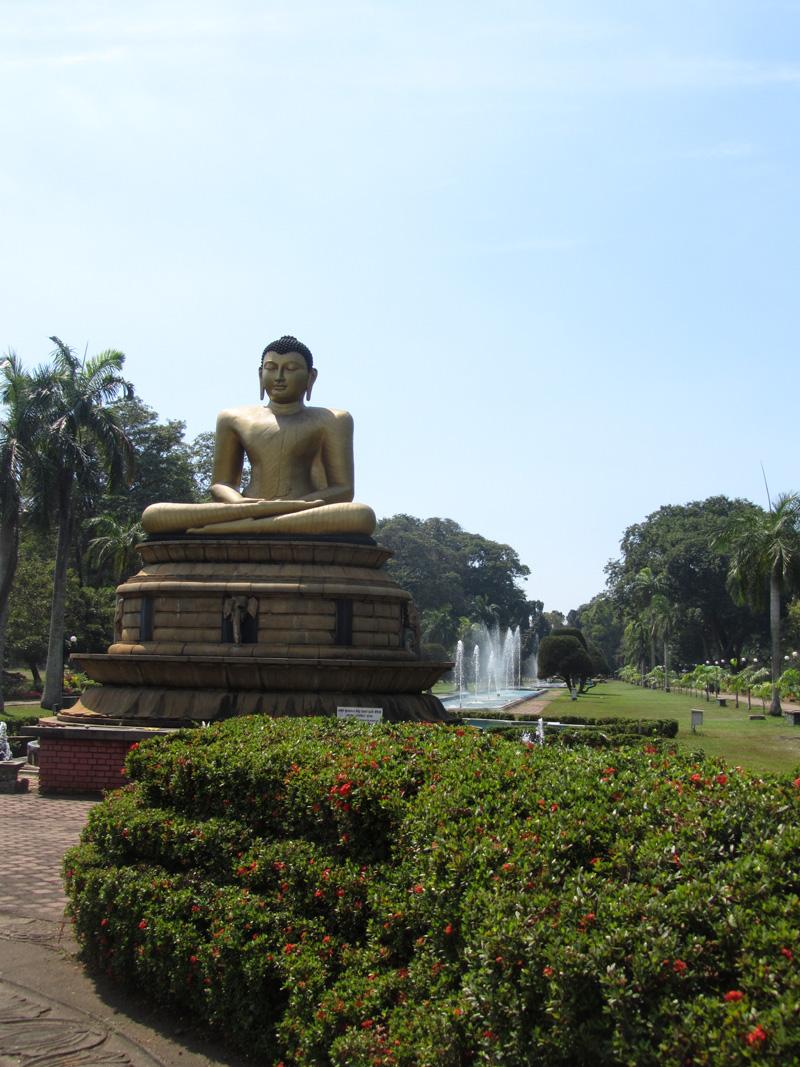 colombo-buddha-puistossa